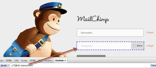 mailchimp password xpath