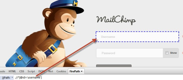 mailchimp username xpath